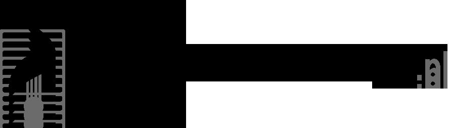 Dźwigi Mazowieckie
